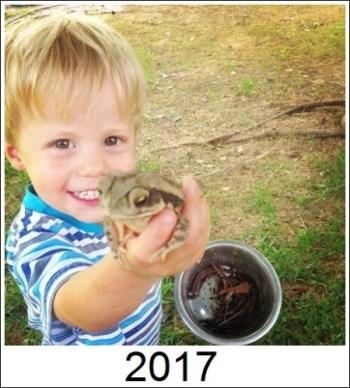 frogs3.jpg