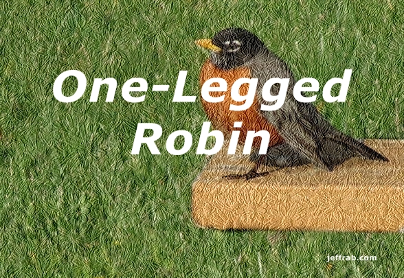One-Legged Robin