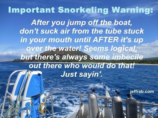 Snorkel Vision Warning