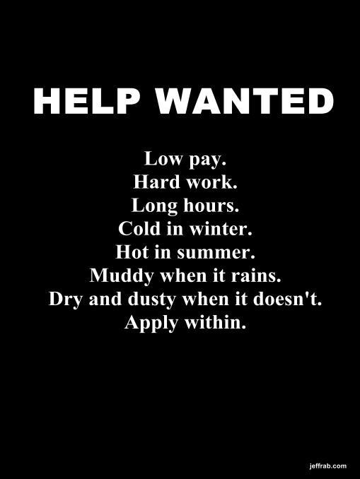 Job Fair story