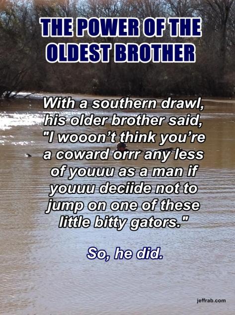Little Bitty Gators story