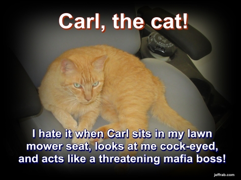 Carl, The Bird Killer