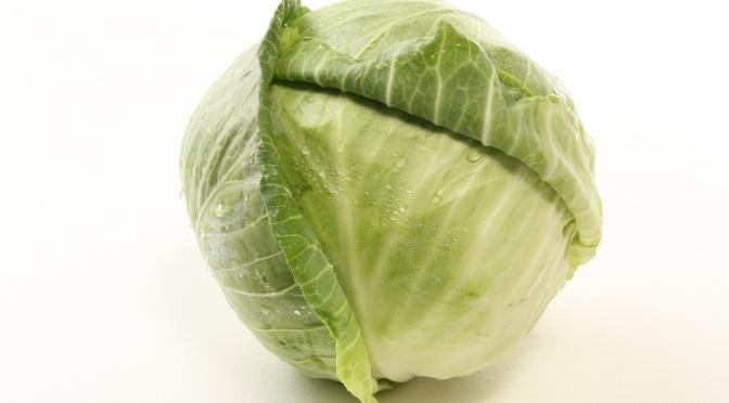 Cabbage Pot Love