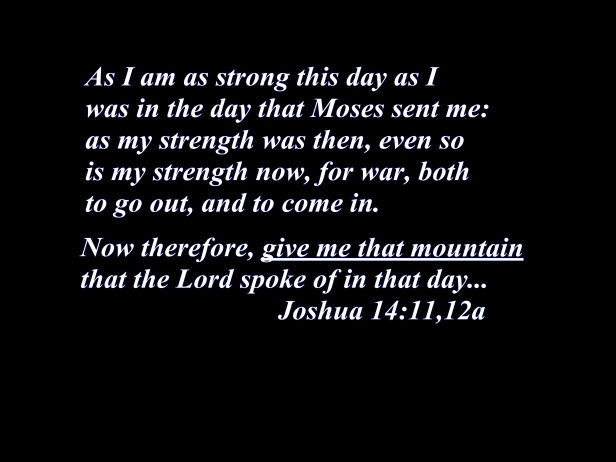 Joshua 14 1112a