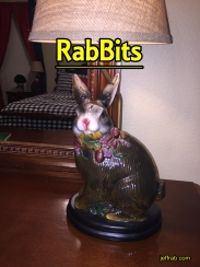 Rabbits Blog 2