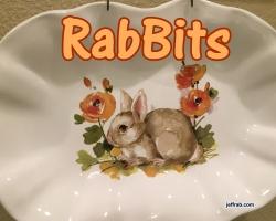 RabBits 16