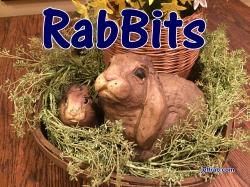 RabBits 19