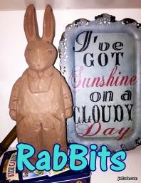 RabBits 27